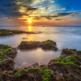 Silent Morning by Rio Tanusudiro - Landscapes Sunsets & Sunrises ( coral, moss, sea, long exposure, rock, skylight, sunrise, beach, sunlight, light )