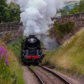 West Somerset Railway by Claes Wåhlin - Transportation Trains ( steam locomotive, england, trains, west somerset railway, preserved railway, steam )
