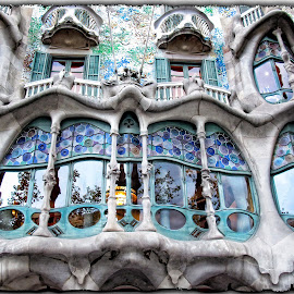 Casa Batlló by Francesca Riggio - Buildings & Architecture Architectural Detail ( reflection, blue, windows, barcelona, spain )