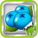 DVR:Bumper - Blueberry icon
