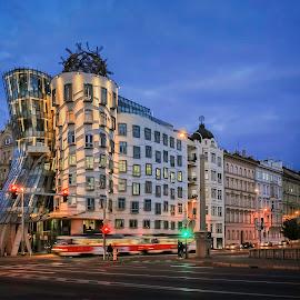 Urban Lifestyle by Eva Krejci - Buildings & Architecture Architectural Detail ( tram moving, czech republic., blue hour, prague, night shot, Urban, City, Lifestyle )