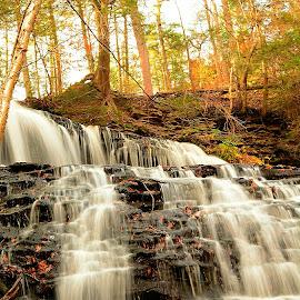 Ricketts Glen by Travis Houston - Landscapes Waterscapes ( glen, awesome, waterscape, beautiful, waterfall )