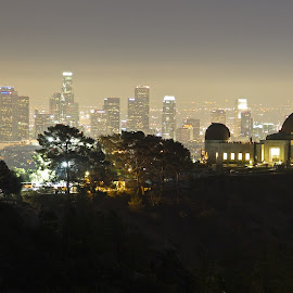 Golden Globe by Dean Mayo - City,  Street & Park  Skylines ( skyline, griffith observatory, los angeles, night, cityscape, photography, dean mayo )