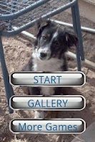Screenshot of Dog Puzzle:Australian Shepherd