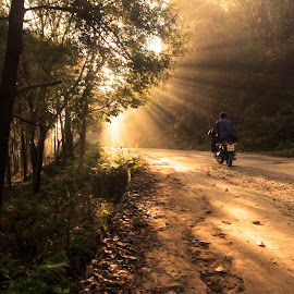 Enter the time machine. by Sam Jaded - Landscapes Travel ( bike, enfield, sunrays, india, road, morning, golden )