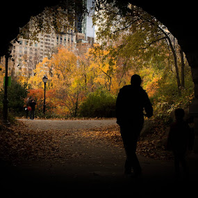 Central Park NYC 2013 by VAM Photography - City,  Street & Park  City Parks ( Urban, City, Lifestyle,  )