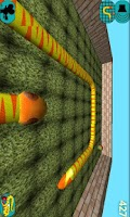 Screenshot of Mad Snake 3D