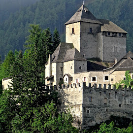 Castle in Alps by Steven Aicinena - Buildings & Architecture Homes ( castle, alps,  )