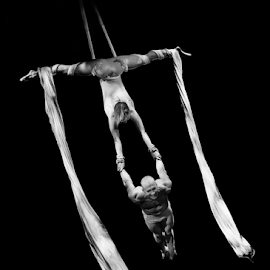 Aerialists by Trevor Bond - People Musicians & Entertainers ( performers, aerialists,  )