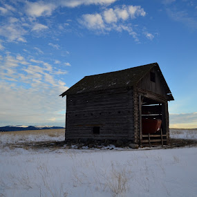 Standing Tall by Selah Madland - Buildings & Architecture Other Exteriors ( old, winter, sky, barn, blue )