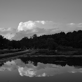 Cloud Over Pond by Brian Hughes - Landscapes Cloud Formations ( reflection, park, summer, cloud, pond )