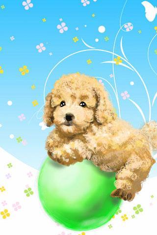 子犬のタッチライブ壁紙