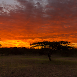 by Nobby Clarke - Landscapes Sunsets & Sunrises