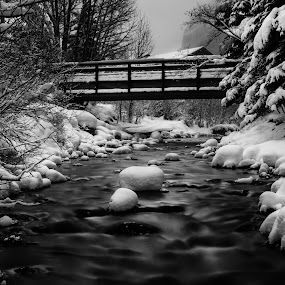 Winter Creek by Jim Hamel - Black & White Landscapes ( water, winter, creek, snow, colorado, telluride )
