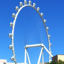 by Tom Carson - City,  Street & Park  Amusement Parks ( ride, ferris, height, thrilling, wheel, amusement, vegas )