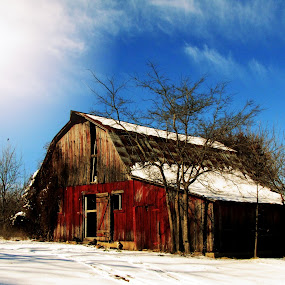 Barn Charm by Sue Neitzel - Buildings & Architecture Decaying & Abandoned ( winter, wood, farms, barns, rustic,  )