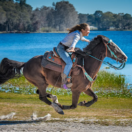 On the wings of her horse by Lynn Wiezycki - Sports & Fitness Other Sports ( gallop, rider, equine, blue, horse, action, lake, run, women )