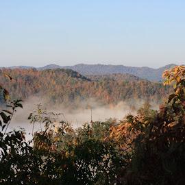 Foggy fall valley by Jennifer Bryant - Novices Only Landscapes