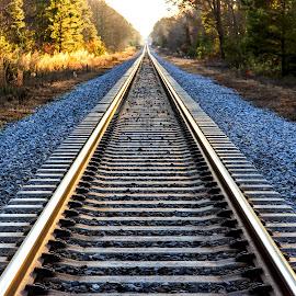 Into the Light by Carol Plummer - Transportation Railway Tracks ( railway, train, tracks, transportation, light )