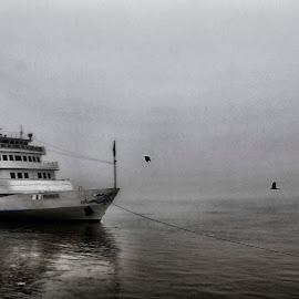 by Laurentiu Bragau - Transportation Boats