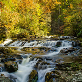 Panther Creek by Jennifer Tsang - Landscapes Waterscapes ( panther creek, waterscape, fall, waterfall, georgia )