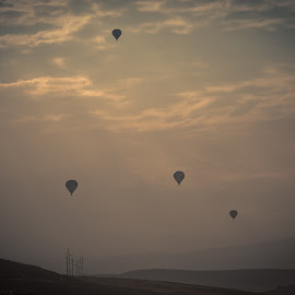 by Justin Brady - Transportation Other ( utah, summer, ut, hot air balloons, balloons, park city,  )