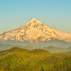 Mount Hood by Sandra Maldonado - Landscapes Mountains & Hills ( oregon, mountain, sunset, snow, mount hood )