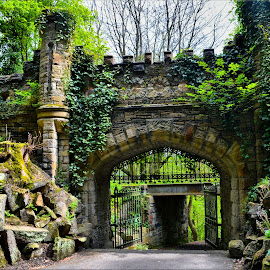 Castle gate by Nic Scott - Buildings & Architecture Other Exteriors ( gateway, ruins, castle )