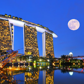 marina bay by Seng Chan - City,  Street & Park  Skylines ( marina#bay#skyline#landscape#city#night#light#nature#,  )