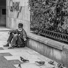 The Pigeon Feeder by Jay Gould - Black & White Street & Candid ( pigeon, ireland, black and white, dublin, street, feeding, old man,  )