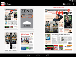 Screenshot of De Morgen