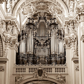 Orgel im St. Stephansdom-Passau by Alice Lustah - Buildings & Architecture Places of Worship