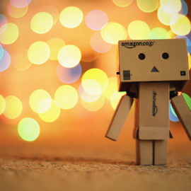 Danbo vs Bookeh by Hasnain Rizvi - Artistic Objects Toys ( danbo, bookeh, danboard,  )
