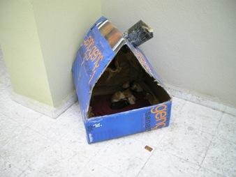 seramik-kediler-01