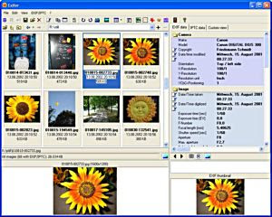 Exifer free exif viewer