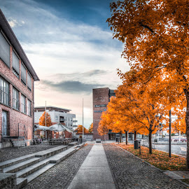 Askim, Norway 097 by IP Maesstro - City,  Street & Park  City Parks ( clouds, hdr, park, store, colors, street, maesstro, pub, city, norwa, sky, nordea, autumn, fall, caffe, bank, askim )