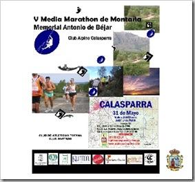 cartel-vmediamaraton-2008