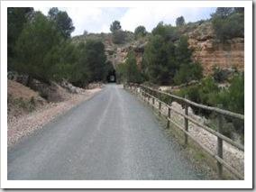 100D5CTGP1_1 Via Verde