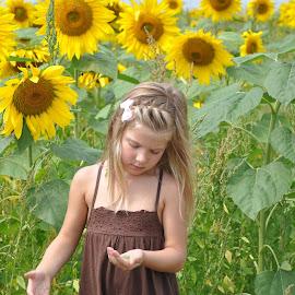 by Sandy Newfield - Babies & Children Children Candids ( child, girl, sunflowers, garden )