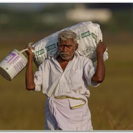 The Return by Thirumoorti Ra - People Portraits of Men ( village, simple, worker, india, man )