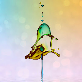 Waterdrops by Kurito Afsheen - Abstract Water Drops & Splashes ( abstract, splash, waterdrops )