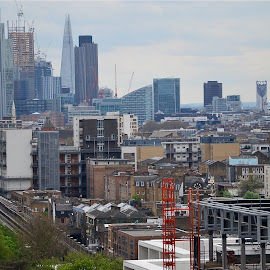 London' skyline by Federico Domenici - City,  Street & Park  Skylines ( skyline, shard, london, skyscrapers, architecture )