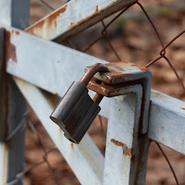 Rust by Maša Medica - Buildings & Architecture Architectural Detail ( old, lock, closed, brown, rust,  )