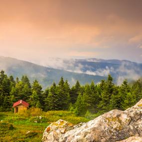 Dağ Evleri by Ahmet Çamaltı - Landscapes Forests ( ilgaz dağlari, mountain, doğa, landscape, ilgaz )