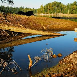 Alder Lake, Washington  by Alex Biebl - Landscapes Travel ( water, lake, sunrise, landscape, pond,  )