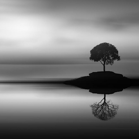 anomaly by Budi Cc-line - Black & White Landscapes