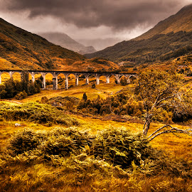 Glenfinnan Viaduct & Beyond by Don Alexander Lumsden - Landscapes Mountains & Hills