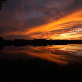 Laura Walker Lake Sunset by Stephen Booth - Landscapes Sunsets & Sunrises ( laura walker state park, reflection, sunset, georgia, lake, ware county, waycross ga,  )