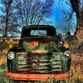 Old Green by Julie Dant - Transportation Automobiles ( trucks, antique vehicles, chevrolet, antique trucks, nostalgia, vehicles, green trucks )