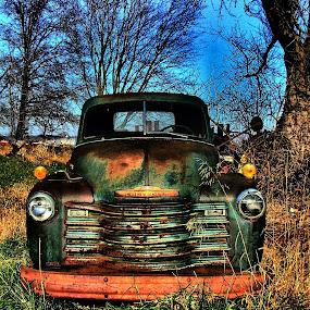 Old Green by Julie Dant - Transportation Automobiles ( trucks, antique vehicles, chevrolet, antique trucks, nostalgia, vehicles, green trucks )